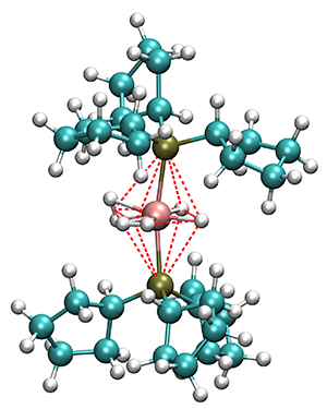 Stable Ru-complex with two H2 ligands coordinated to the central metal